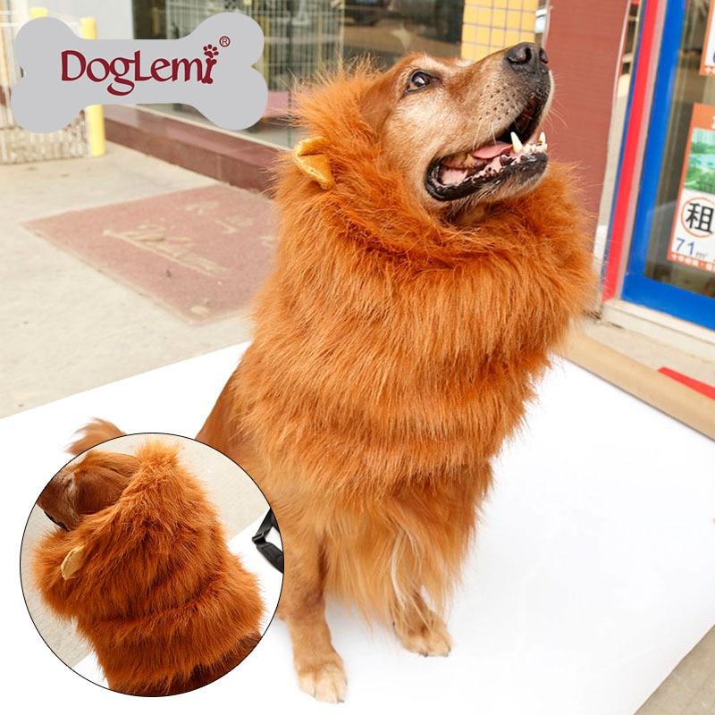 10 قطع لكل حزمة كبير كلب القط الأسد - منتجات الحيوانات الأليفة