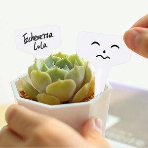 Image 4 - 100 Uds. En forma de T decoraciones de plástico en forma de I plantas de vivero de jardín flores en macetas etiquetas y etiquetas herramientas para identificación