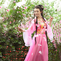 Chinese Dance Costume for Women Fairy Tang Suit Hanfu Dress Guzheng Costume Fairies Chiffon Skirt Chinese Folk Dance Costume
