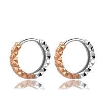 18K Gold Women Accessories Vintage Retro Small Hoop Earrings 2 Tone Hoop Earrings Gold Rose New Earrings Fashion Jewelry 10mm 12