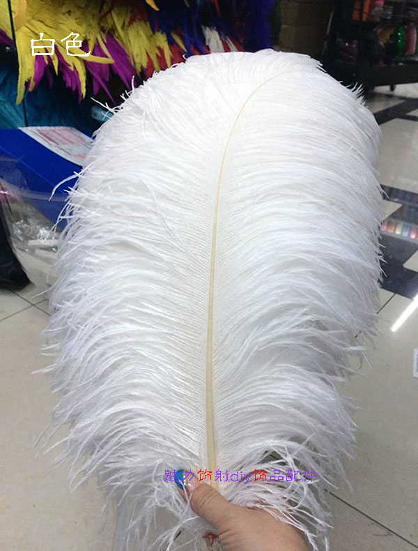 \5 first grade black drabs ostrich feathers 12-15cm Five