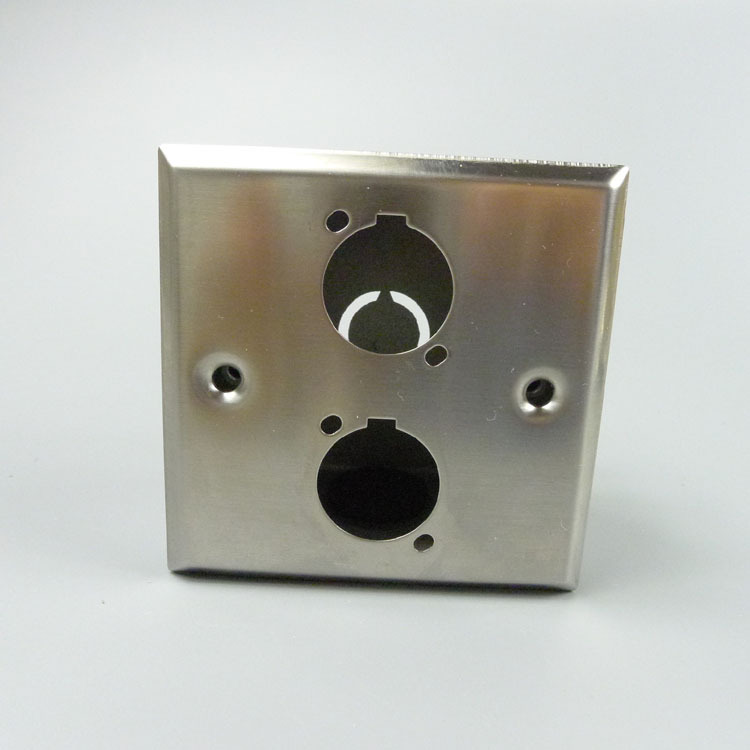 Dual Ports D Type Stainless Wall Plate