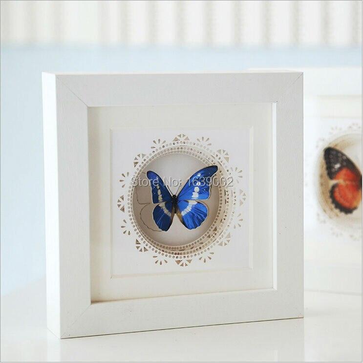 frames butterfly