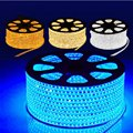 LED Strip 5M/30M 220V SMD 5050 Flexible Led Strip Light  give Power Plug 60 leds/m IP65 Waterproof led Ribbon Freight charge