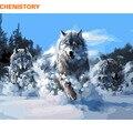 CHENISTORY Abstrakte Wölfe Tiere Diy Digitale Malen Nach Zahlen Kits Acryl Bild Hand Gemalt Öl Malerei Für Wohnkultur