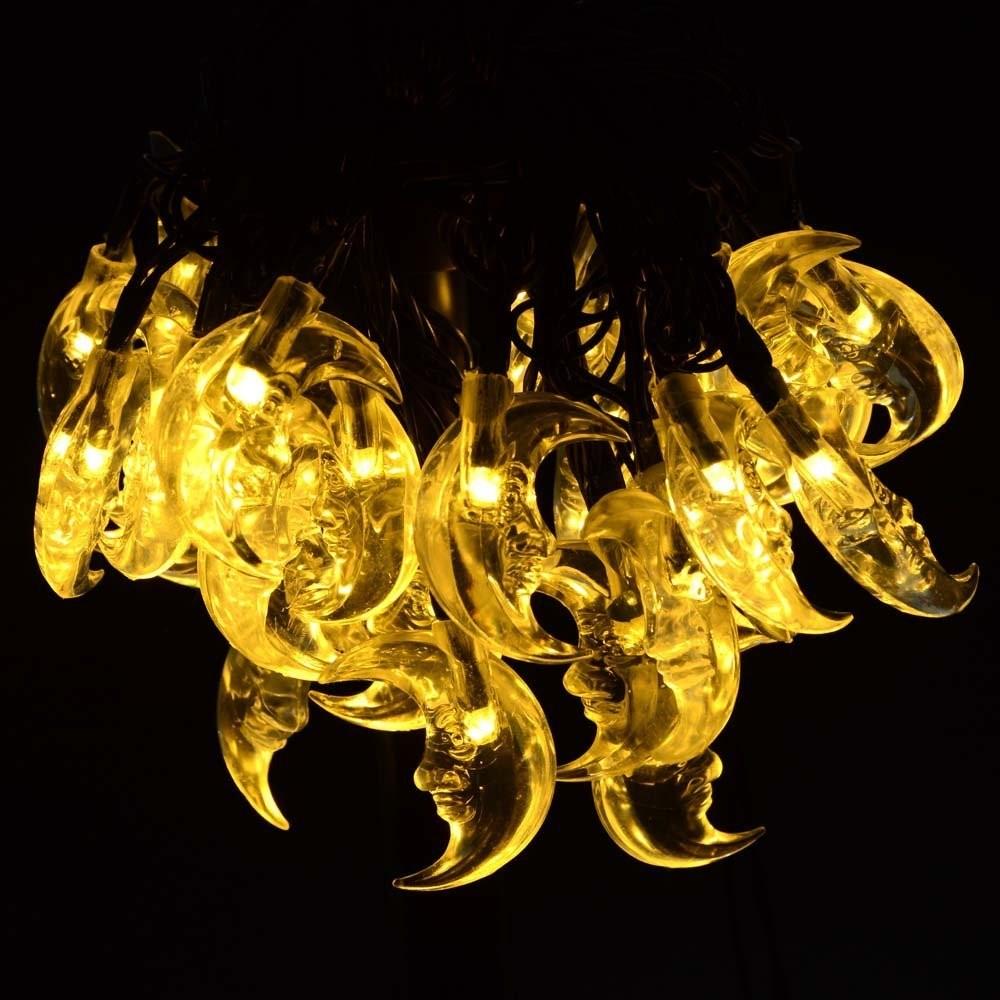 Solar Powered LED String Lights (11)