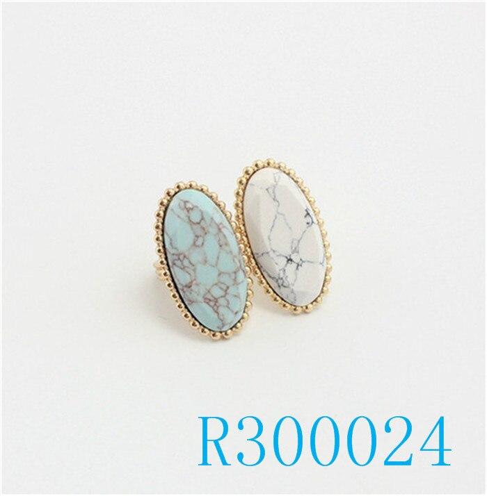 R300024