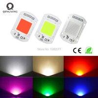 5 uds 10 Uds AC220V 50 W IC LED inteligente Cob lámpara de chip AC 220V 50 W rojo verde azul luz blanca cálida para luz LED de inundación al aire libre|Abalorios luminosos| |  -