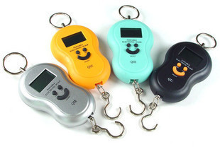 Portable scale portable hook scale said portable electronic scale spring balance 40kg