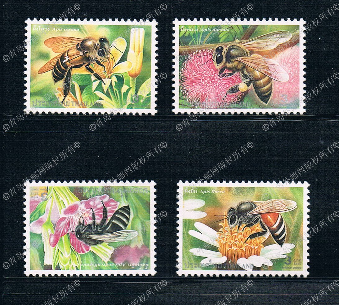 TH0664 Thailand 2000 insect bee stamps 4 new 0108 th0757 thailand 1993 ancient temple ruins 4 new 0929