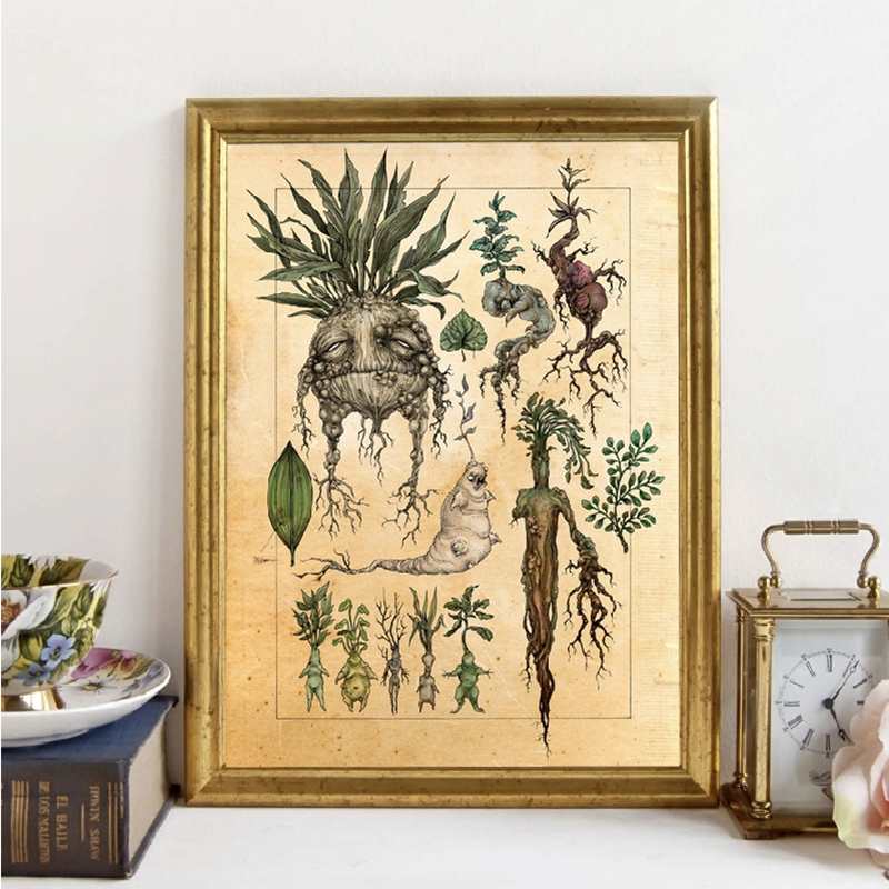 Harry Fan Art Illustration Cute Mandrake Plant Decor Canvas Painting Wall Picture , Classic Movie Poster Kids Room Decor