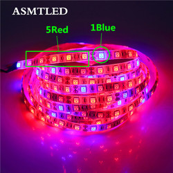 5050 LED Plant Grow Lights 50cm 1m 2m 3m 4m 5M Waterproof DC12V Red Blue 3:1, 4:1, 5:1,for Greenhouse Hydroponic Plant Growing