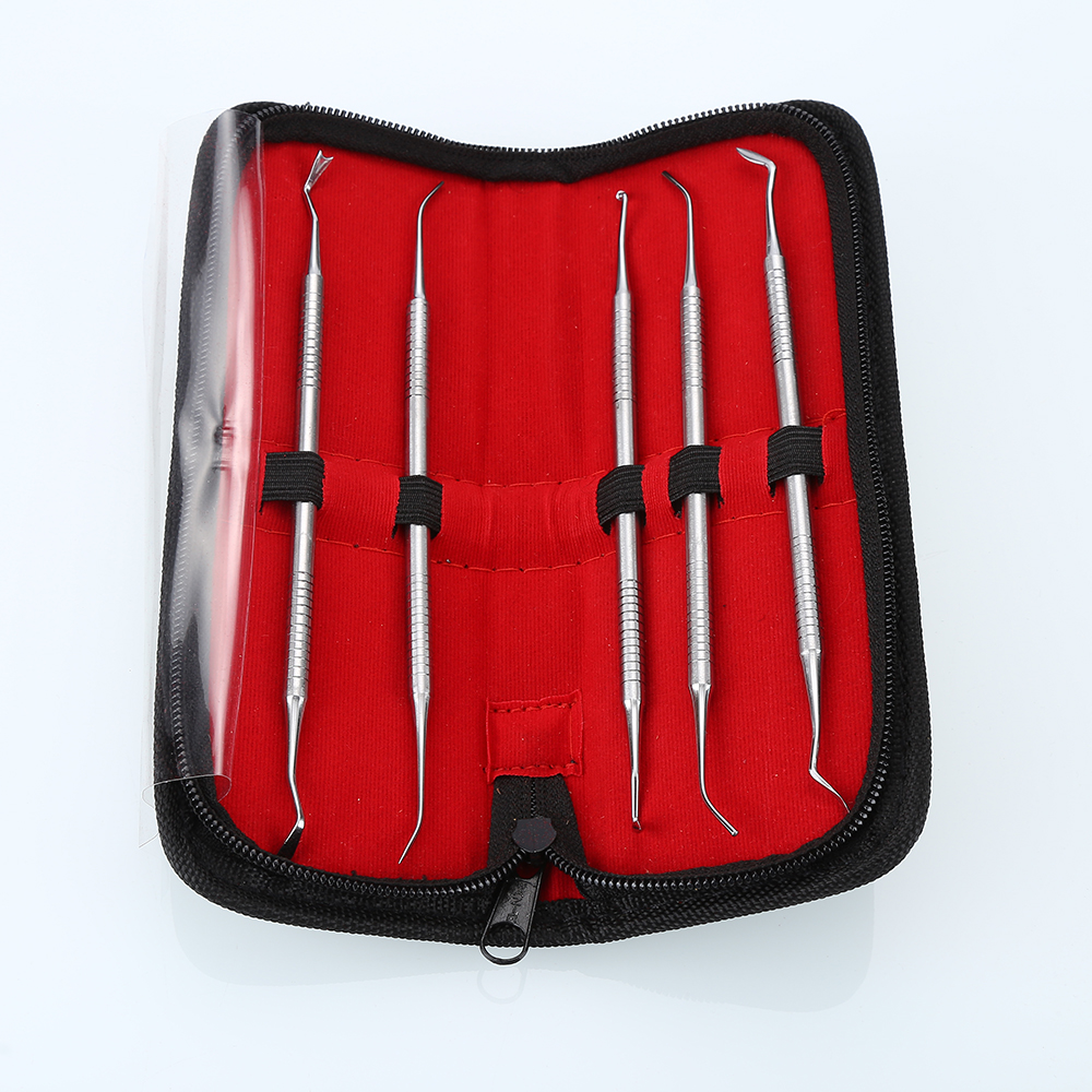 New 5 PCS Dental Tooth Pick Probe Set Dental Composite Kit For Making Molds Hygiene Tools High Quality With Bag BFWY