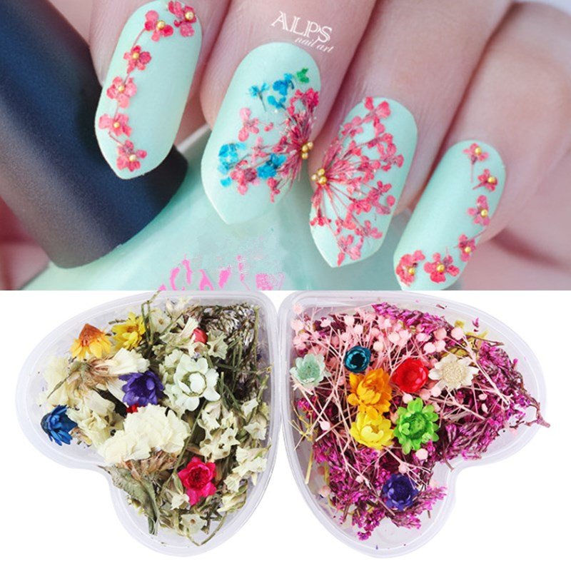 Aliexpress.com : Buy Mixed Dried Flowers Nail Art Decorations ...