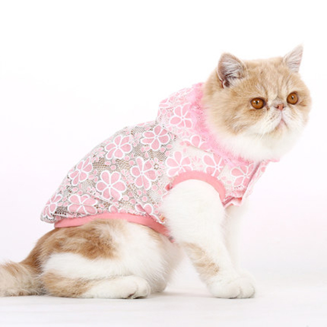 Wedding Clothes For Dogs Pets Coats Cute T Shirt Dress Vest Cat Arel Clothing Roupa