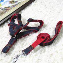 Cute Angel Pet Dog Harness Set Leads For Small Dogs Cats Designer Wing breast-band collars leashes dog