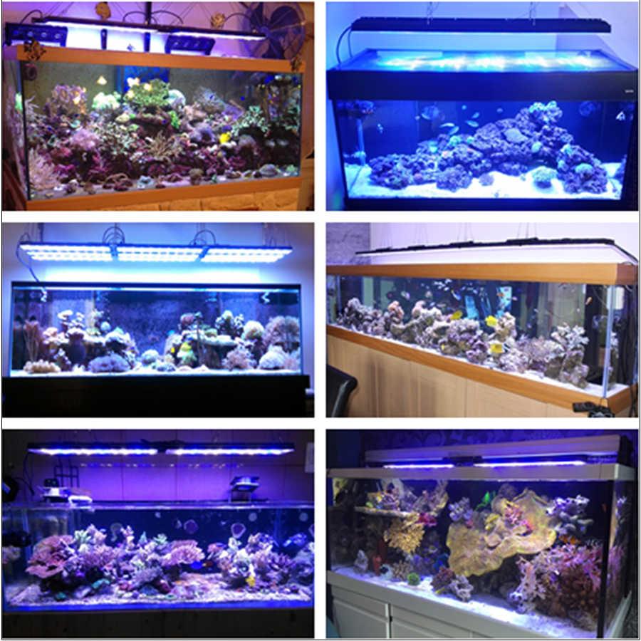 DSUNY Программируемый аквариум светодиодное освещение chihiros eclairage Pecera acuario Марино luz sunsun рыб ladron enchufe