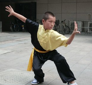 free shipping and kungfu uniform for children