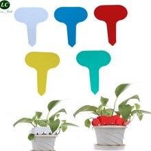T פלסטיק צמח אביזרי גינה גינון תווית תווית תווית תווית סטריאו תג פרח סוג T