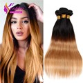 Ombre pelo virginal brasileño recto 3 unids mucho dos tonos Ombre pelo brasileño Bundles armadura del pelo humano brasileño de la virgen recta