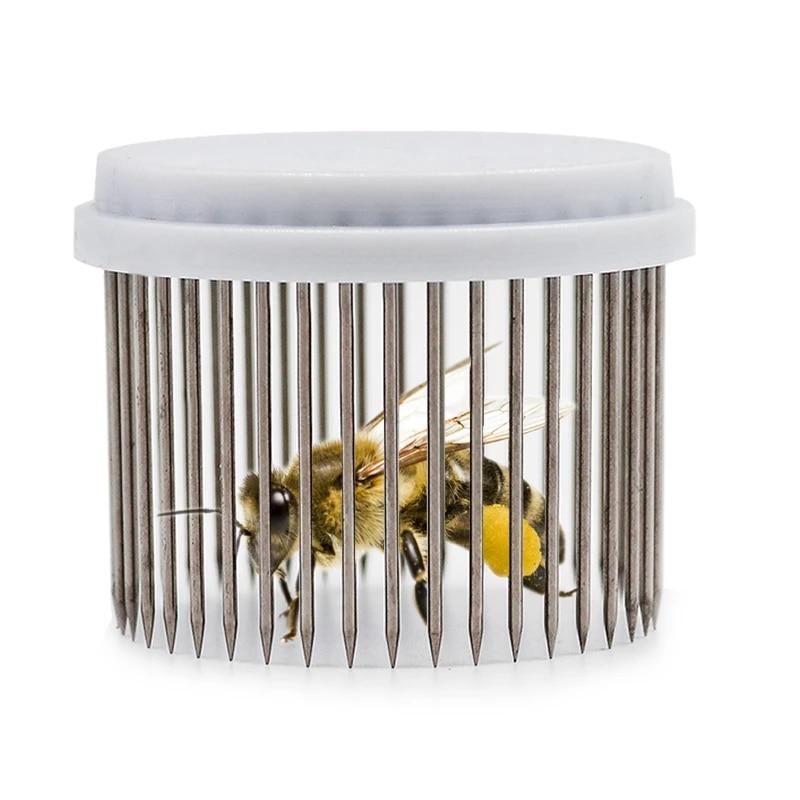 Queen Bee Cage Catcher Clip Beekeeping Tool Equipment Stainless Steel SG