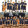 High School Volleyball Club Anime Haikyuu Cosplay Hinata Jersey Karasuno Oikawa Kenma Nishinoya Kuroo Karasuno Cosplay Costumes