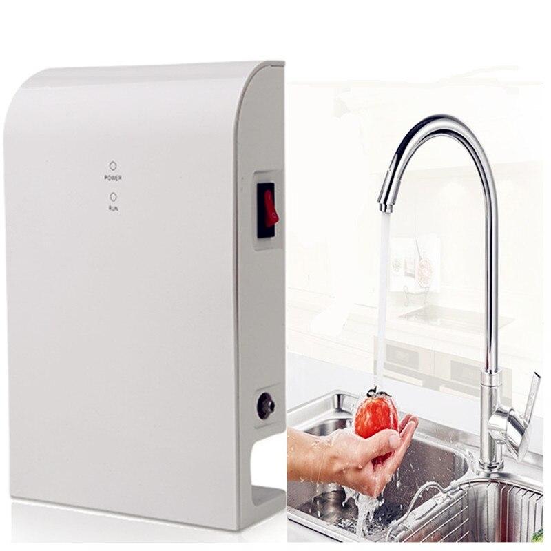 Ozoniseur d'eau pour lavage de légumes et fruits filtre à eau de cuisine ozonateur universel AC100-240V à DC12V sans venturi