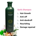 Garlic Hair Shampoo Hair Growth Nourishing Anti dandruff Shampoo Professional Care 500 ml  Free Shipping