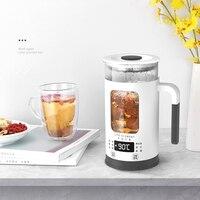 NEWEST Mini Multi function Electric Kettle Health Preserving Pot Glass Boiled Tea Pot Hot Water bottle Warm Kettle 220V 600ML
