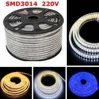 DHL Waterproof 220V Led Strip 3014 SMD IP67 120Leds/M Flexible LED Tape Light With 220V EU Power plug 30M 40M 50M 100M