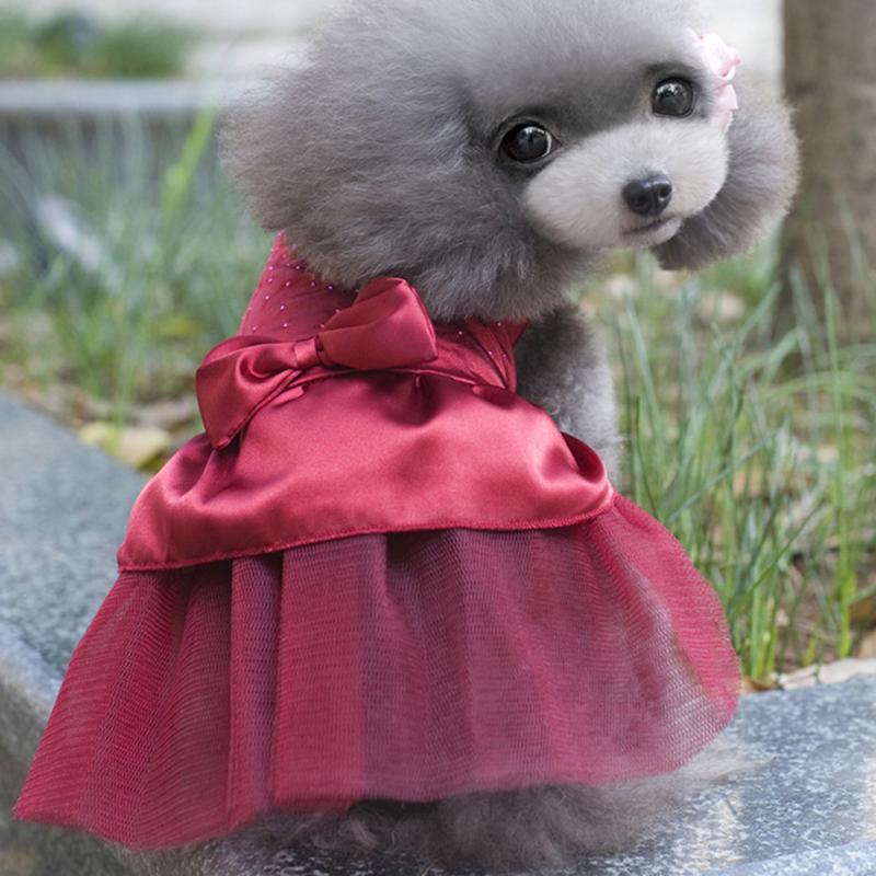 Mascotas gato perro traje vestido rhinestone bowknot Puppy princesa ...