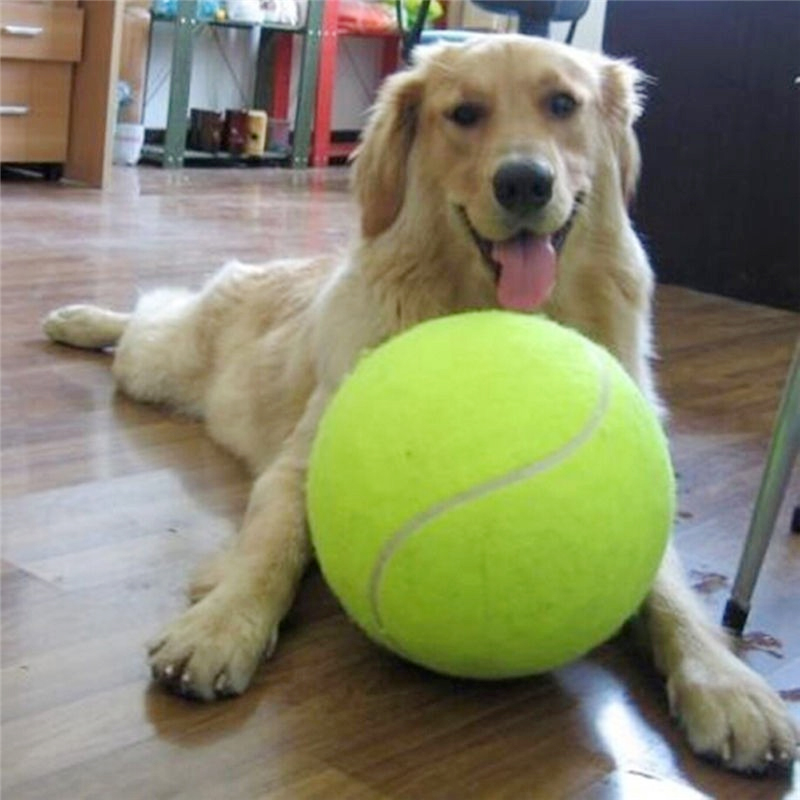 1pc 24CM Giant Tennis Ball For Pet Chew Big Inflatable Signature Mega Jumbo Toy Supplies Outdoor Cricket