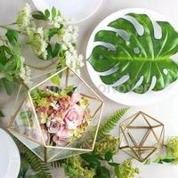 2 P ack Glass Hanging Planter Air Plant Terrarium, Irregular Geometric Terrarium Flower Vase Window Pot Box Container Case
