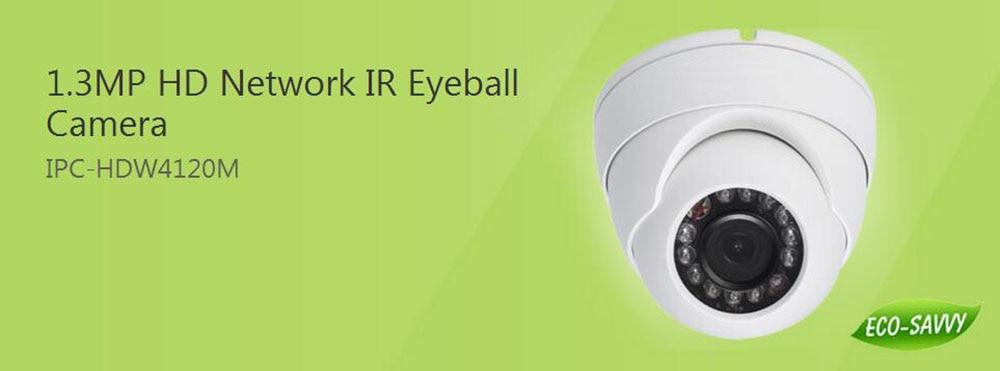 Free Shipping DAHUA 1 3MP HD Network IE Eyeball Camera Waterproof IP67 Original English Version without