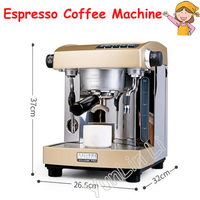 Espresso Cafe Machine Professional Double Pump Espresso Coffee Machine Coffee Maker House Use or Small Coffee Shop