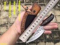 الفواكه VG10 دمشق الصلب الأسماك سكين EDC أداة شفرة مثبتة snakewood مستقيم سكين صلابة عالية في الهواء الطلق بقاء سكين تخييم-في سكاكين من أدوات على