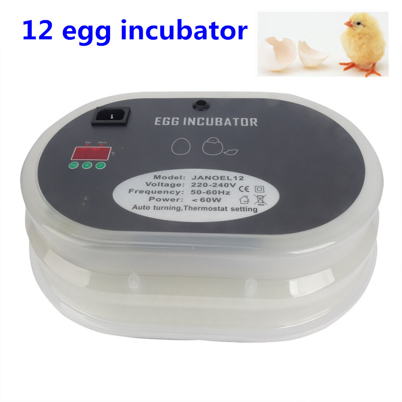 12 Eggs  Incubator Automatic Turn The Eggs Chickens Ducks Quail Dove Poultry Farm  Equipment love among the chickens