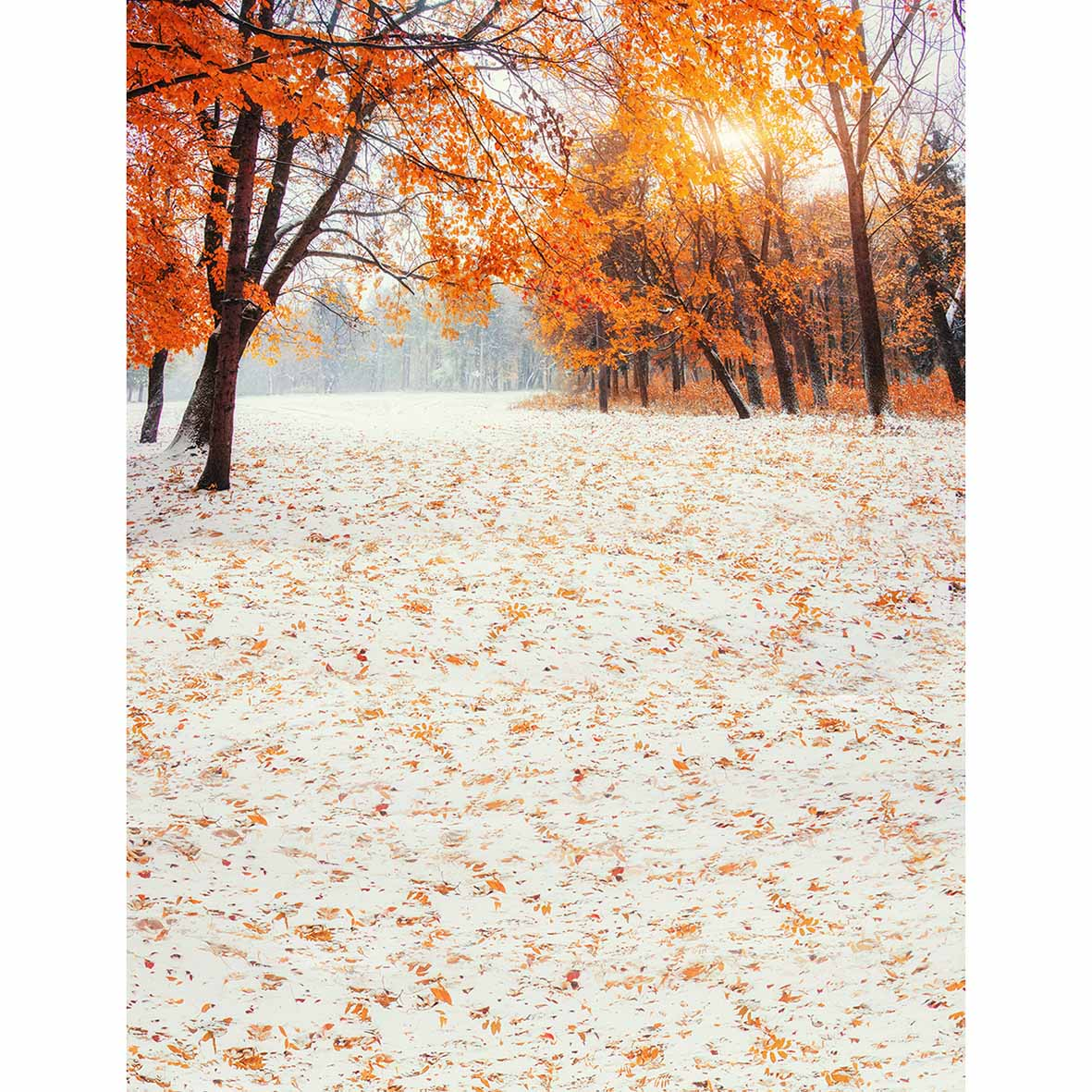 Allenjoy photographic background Beautiful autumn leaves fairyland orange dreamy new backdrop photocall photo printed customize in Background from Consumer Electronics