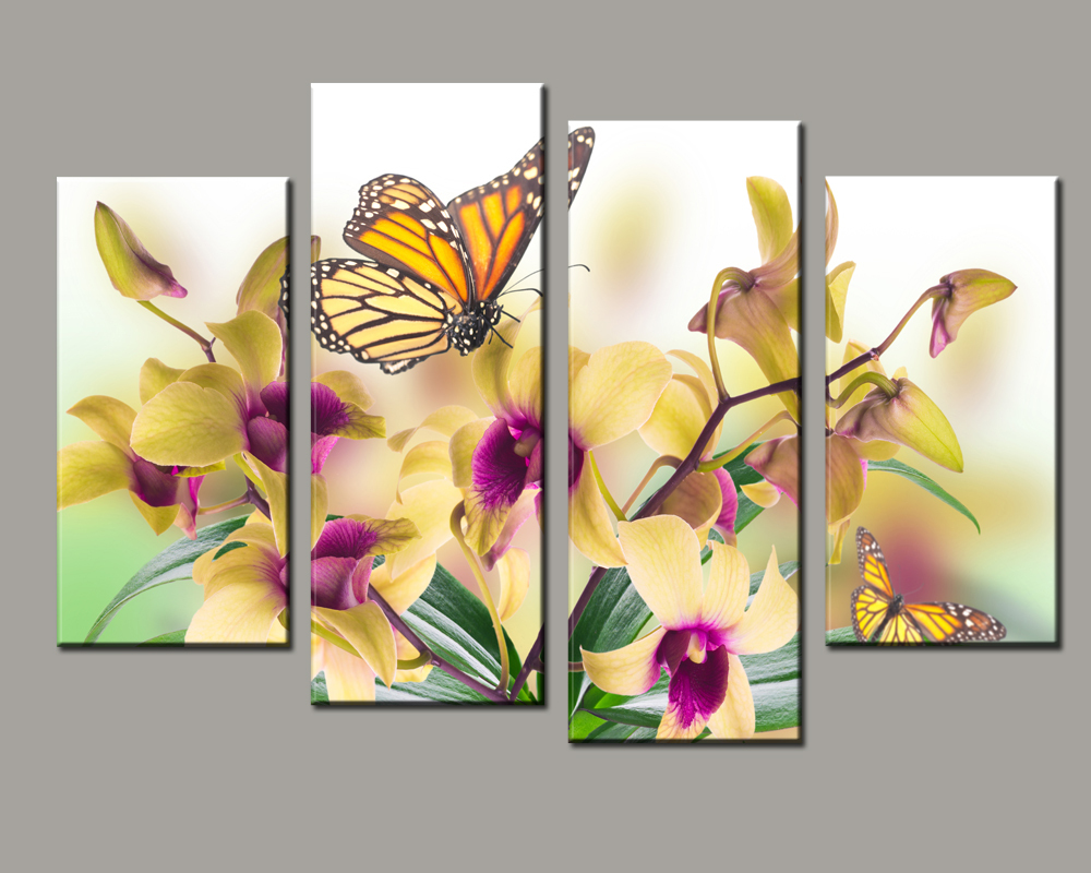 cuadros decoration Beautiful butterfly orchid Canvas Painting ...
