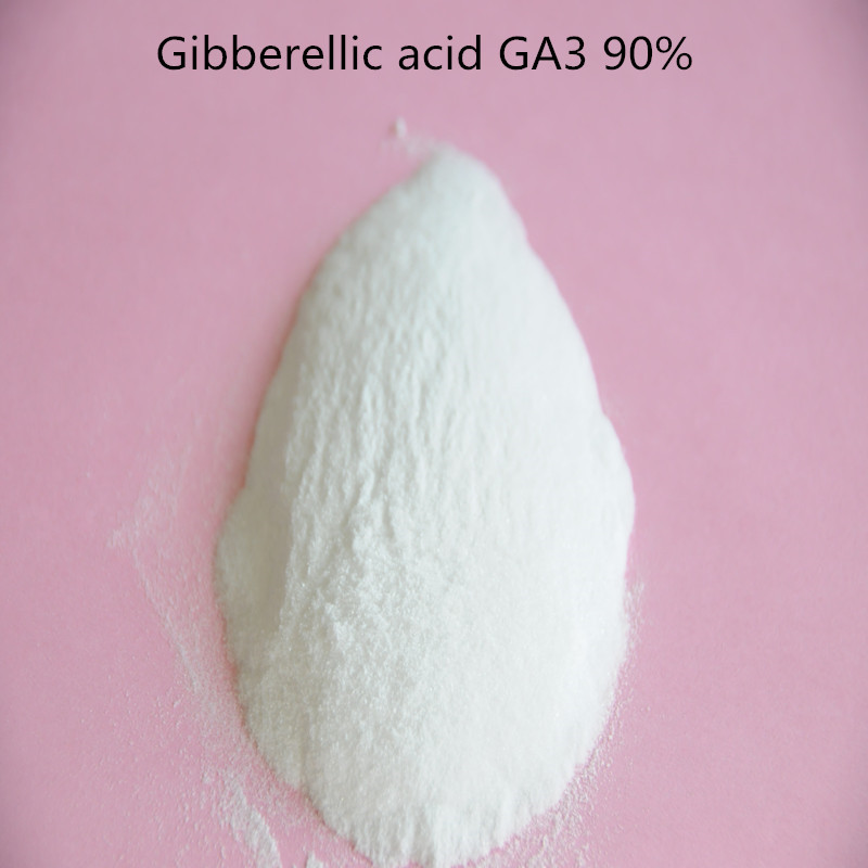 Best Sell Gibberellin / Gibberellic acid GA3 90% TC Free Shipping Enough Stock On Promotion