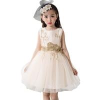 2017 neue Mädchen-ballettröckchen Kleid Blume Hochzeit Geburtstag Party Mädchen Ballkleid Mesh Kleid Gute Qualität Prinzessin Kleid für Mädchen DQ355