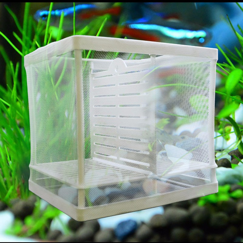 New fishing net breeder aquarium fish tank fry breeding for Fish breeding net