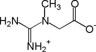 creatine_monohydrate_powder