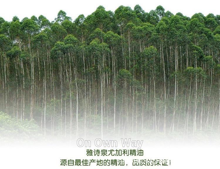 2pcs Eucalyptus Skin Care Essential Oil 10ml sterilization Refreshing cold drive midge 100% Pure Essential Oils Face Care 8