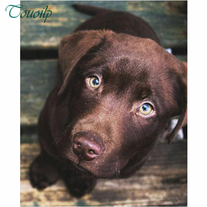Labrador and Rose Crystal Embroidery Cross Stitch DIY 5D Diamond Painting Kit