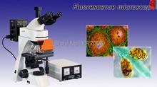 Hot sale 40X-1000X Infinity Plan trino Fluorescence  Microscope  , Well sold In EU , USA , Latin American