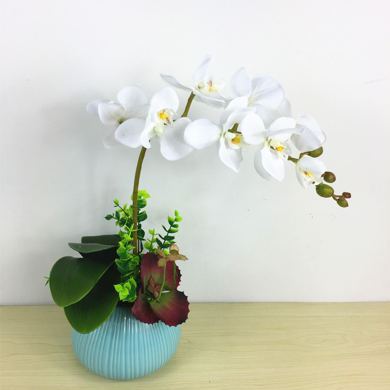 Flower Arrangment White Orchids With Leaves Succulent Plant Real Touch Flower Dinner Table Decoration Hotel Event Free Shipping