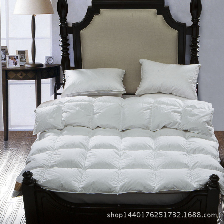 100 white goose down quilt king queen full twin size luxurious warm winter comforter in. Black Bedroom Furniture Sets. Home Design Ideas