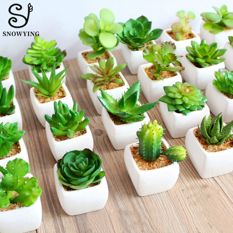 New 60 models Rare Artificial Succulent Plant Cactus font b mini b font Potted Plants Desk