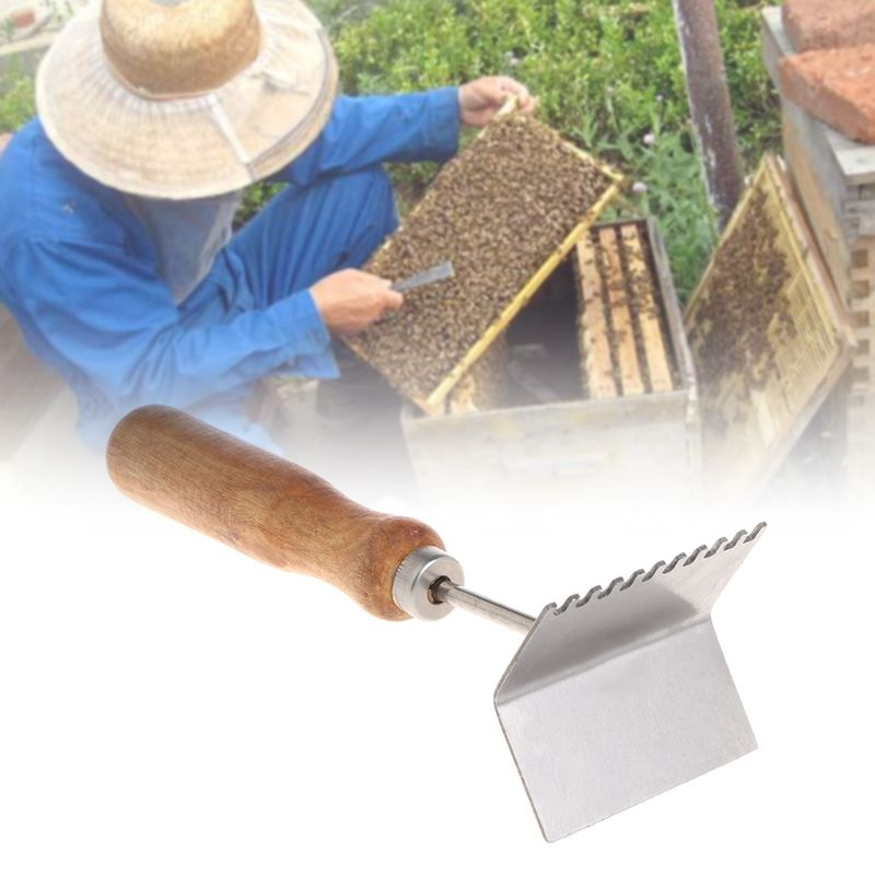 Image 2 - Bee Case Shovel Beekeeping Tools Cleaning Frame Cases Cleaner Scoop Beekeeper Equipment Beehive Wooden Handle Stainless Steel-in Beekeeping Tools from Home & Garden